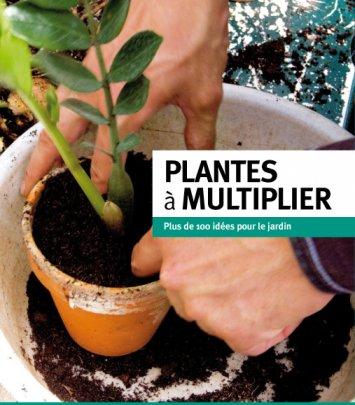 Plantes à multiplier